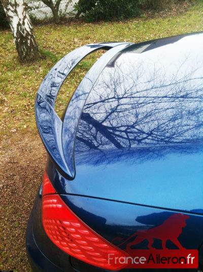 Aileron pour Peugeot 307 CC