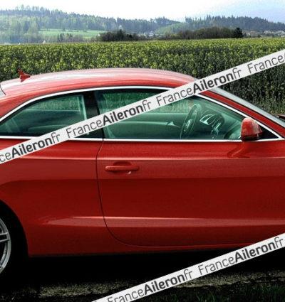 Becquet pour Audi A5